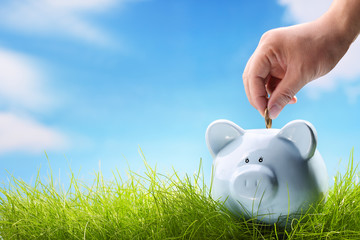 concept of savings