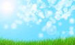 Nature Background With Grass And Bokeh