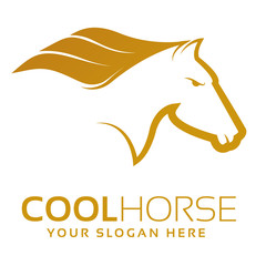 Cool Horse