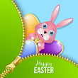 Easter eggs and bunny with zipper