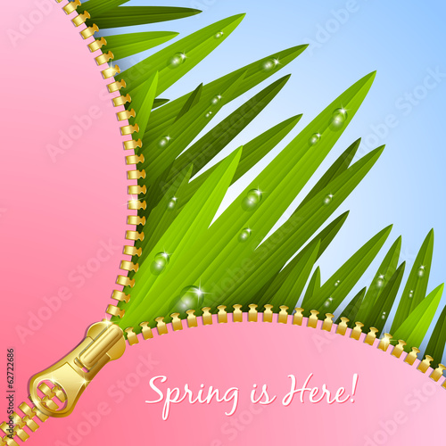 Spring grass with zipper