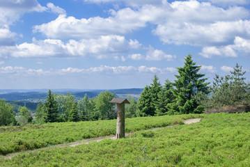 Blick vom Kahlen Asten im Hochsauerland
