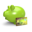 Piggy Bank with Credit Card