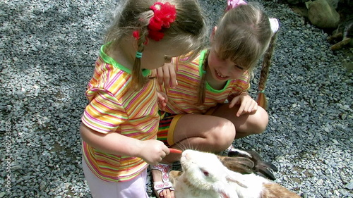 Children feeding rabbit