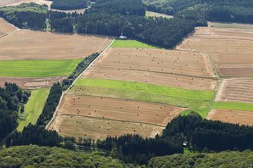 Deutschland, Rheinland-Pfalz, Ansicht der Felder