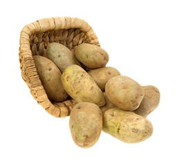 Russet potatoes spilling from basket