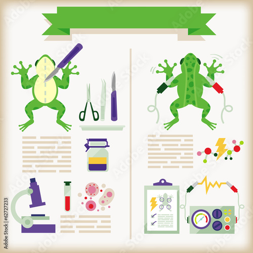 info-graphics of biology