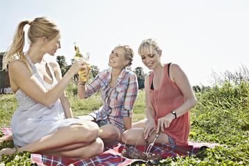 Deutschland, Köln, Junge Frauen trinken Bier beim Picknick