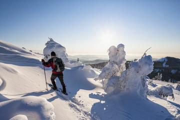Deutschland, Bayern, Person Wandern auf Berg am Bayerischen Wald