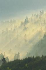 Deutschland, Ansicht von Ober Murgtal und Schwarzwald in der Nähe von Baiersbronn