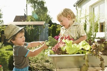 Deutschland, Bayern, Jungen hält Brokkoli