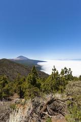 Spanien, Ansicht der Teide-Nationalpark