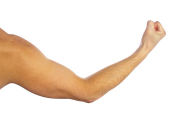 Man's muscular arm on white background