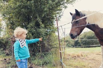 Kleiner Junge, der auf ein Pferd zeigt