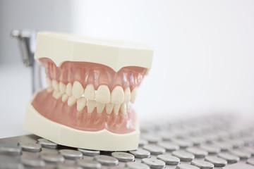 Deutschland, Zahnersatz Ausstellung auf der Tastatur in Zahnarztpraxis