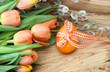 Frühlingboten und ein Osterei
