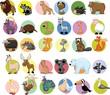 Постер, плакат: Набор различных животных и птиц