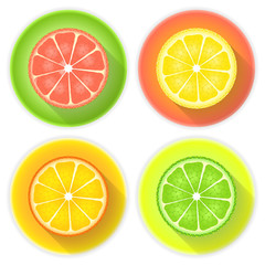 Citrus fruits four icons on a white