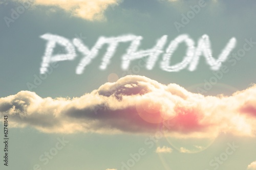 Python against bright blue sky with cloud