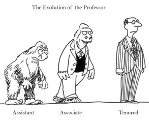 Evolution of the Professor