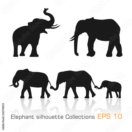 Set of silhouette elephants in different poses - 62744253