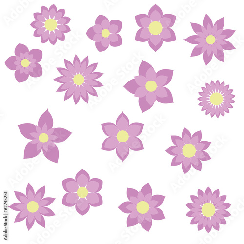 purple flowers with different shapes floral