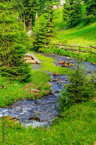 Zdjęcia na płótnie, fototapety na wymiar, obrazy na ścianę : narrow stream with rocks in forest lawn