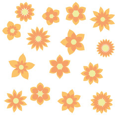 yellow orange flowers with different floral shapes