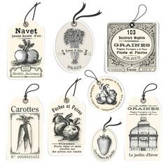 Vintage Seed Tags