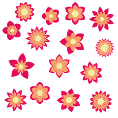 red orange flowers with different floral shapes