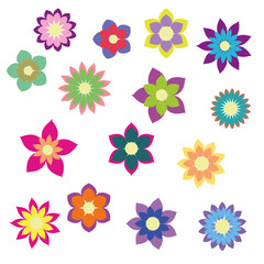 colorful flowers with different shapes floral