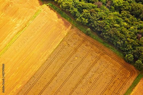 canvas print picture Landwirtschaftliche Anbaufelder und Wald aus der Luft