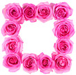 Hot Pink Roses Frame isolated