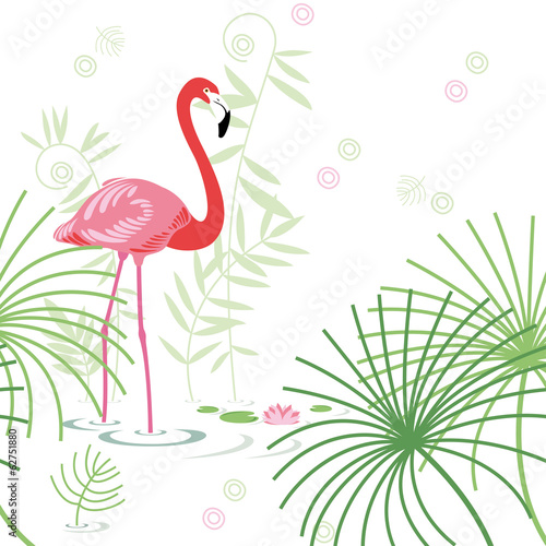 background, pink flamingo © Anastasia Albrecht