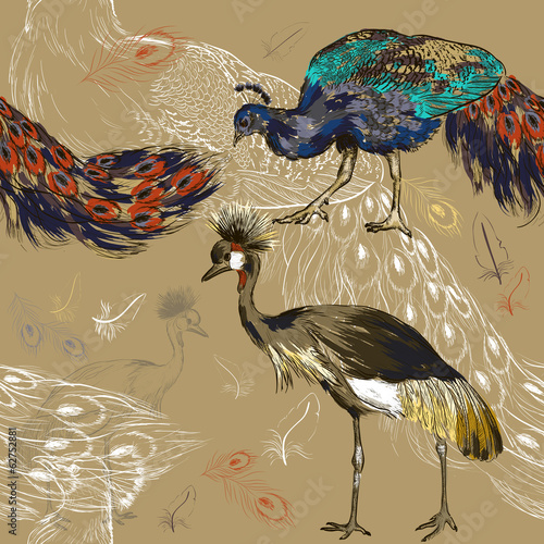 seamless pattern with peacock and Crowned Crane