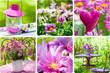 Obrazy na płótnie, fototapety, zdjęcia, fotoobrazy drukowane : Frühling im Garten - Collage