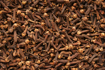 Spice cloves. Close-up. Background.