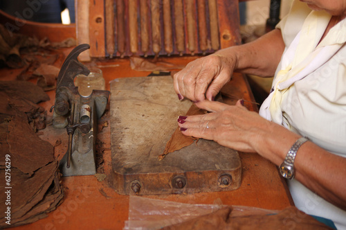 Woman rolling cigars