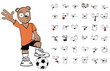 teddy bear soccer  cartoon vector0