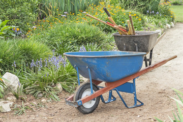 Two wheelbarrows with tools on garden dirt path