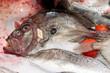 John Dory fish on market stall