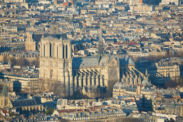 Aerial view of Notre-Dame in Paris