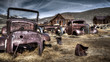 Rusted, Bodie California