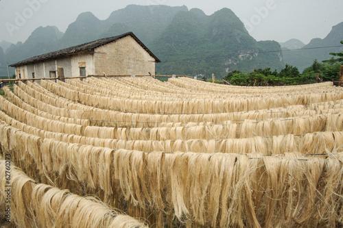 Leinwandbild Motiv Sisal fiber, raw material from China