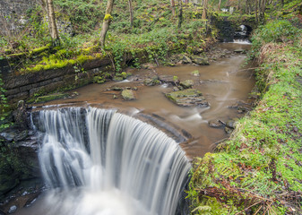 overflowing woodland weir