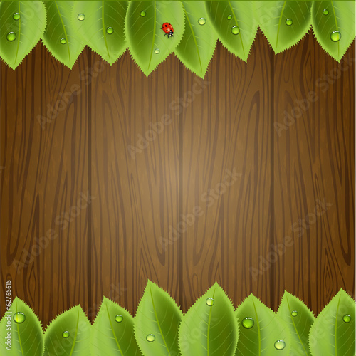 Wooden background with foliage