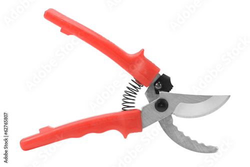 pruner isolated on white background - 62765807