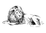 Sketch of a lion. Vector illustration - 62771450