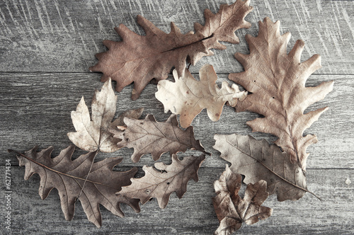dry leaves on a wooden floor