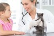 Veterinarian examining kitten with girl
